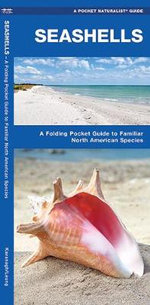 Seashells : A Folding Pocket Guide to Familiar North American Species - Senior James Kavanagh