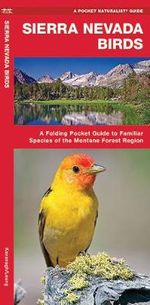Sierra Nevada Birds : A Folding Pocket Guide to Familiar Montane Forest Species - Senior James Kavanagh