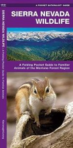 Sierra Nevada Wildlife : A Folding Pocket Guide to Familiar Montane Forest Species - Senior James Kavanagh