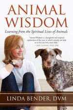 Animal Wisdom : Learning from the Spiritual Lives of Animals - Linda Bender