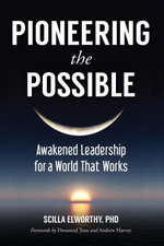 Pioneering the Possible : Awakened Leadership for a World That Works - Scilla Elworthy