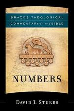 Numbers : Brazos Theological Commentary on the Bible - David L Stubbs