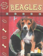 Beagles : Eye to Eye With Dogs - Lynn M. Stone