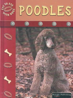 Poodles : Eye to Eye With Dogs - Lynn M. Stone