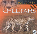 Cheetahs : Eye to Eye With Big Cats - Jason Cooper