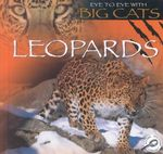 Leopards : Eye to Eye With Big Cats - Jason Cooper