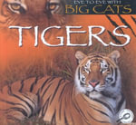Tigers : Eye to Eye With Big Cats - Jason Cooper