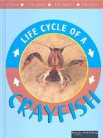 Life Cycle Of A Crayfish : Life Cycles - Jason Cooper