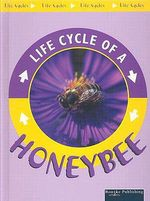 Life Cycle Of A Honeybee : Life Cycles - Jason Cooper