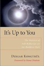 It's Up to You : The Practice of Selfreflection on the Buddhist Path - Dzigar Kongtrul