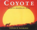 Coyote : North America's Dog - Stephen R Swinburne