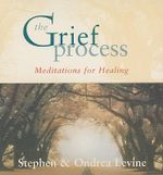 The Grief Process : Meditations for Healing - Stephen Levine