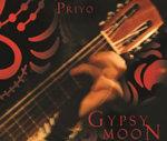 Gypsy Moon : Exotic Spanish Guitar Set to Tribal Dance Rhythms - Deva Privo