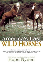 America's Last Wild Horses : The Classic Study of the Mustangs--Their Pivotal Role in the History of the West, Their Return to the Wild, and the Ongoing Efforts to Preserve Them - Hope Ryden