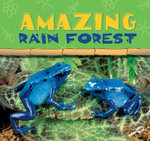 Amazing Rain Forest : Rain Forests Today : Discovery Library - Ted O'Hare