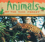 Animals of the Rain Forest : Rain Forests Today : Discovery Library - Ted O'Hare