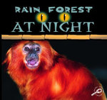 Rain Forest at Night : Rain Forests Today : Discovery Library - Ted O'Hare