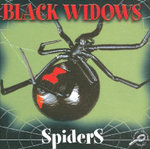Black Widow Spiders : Discovery Library of Spiders - Jason Cooper