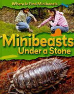 Minibeasts Under a Stone - Sarah Ridley