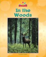 In the Woods : Beginning-To-Read - Mary Lindeen