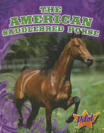 The American Saddlebred Horse - Rachel A Koestler-Grack