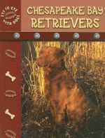 Chesapeake Bay Retriever - Lynn M. Stone