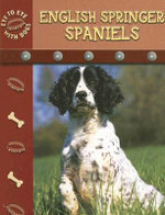 English Springer Spaniels : Eye to Eye With Dogs - Lynn M. Stone