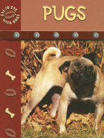 Pugs : Eye to Eye With Dogs - Lynn M. Stone