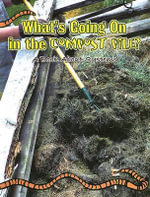 What's Going on in the Compost Pile : A Book about Systems - Rachel Chappell