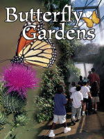 Butterfly Gardens : Field Trips - Jennifer B. Gillis