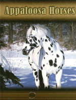 Appaloosa Horses : Eye To Eye With Horses - Lynn M. Stone