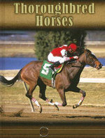 Thoroughbred Horses : Eye To Eye With Horses - Lynn M. Stone