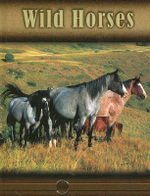 Wild Horses : Eye to Eye with Horses (High Interest) - Lynn M. Stone