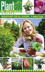 Houseplants for All Seasons