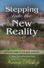 Stepping Into the New Reality : Life in the Higher Realms Series - Book Two - Karen Bishop