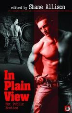 In Play View : Hot Public Gay Erotica - Shane Allison