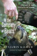In the Company of Bears : What Black Bears Have Taught Me about Intelligence and Intuition - Benjamin Kilham