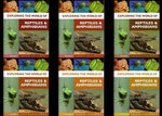 Exploring the World of Reptiles and Amphibians, 6 x Hardback Books in 1 x Set