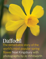 Daffodil : The remarkable story of the world's most popular spring Flower - Noel Kingsbury