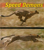 Speed Demons : Weird and Wonderful Animals - David Armentrout