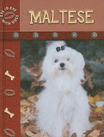 Maltese : Eye To With Dogs - Lynn M. Stone