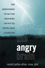 Healing the Angry Brain : How Understanding the Way Your Brain Works Can Help You Control Anger & Aggression - Ronald T. Potter-Efron
