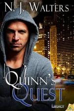 Quinn's Quest - N J Walters