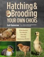 Hatching and Brooding Your Own Chicks : Chickens, Turkeys, Ducks, Geese, Guinea Fowl - Gail Damerow