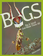 Bugs : Big & Small God Made Them All - William Zinke