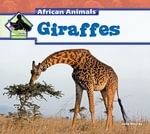 Giraffes - Julie Murray