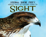 Seeing Their Prey : : Animals with an Amazing Sense of Sight - Kathryn Lay