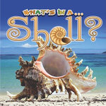 What's In A... Shell? - Tracy Nelson Maurer