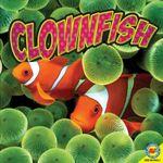 Clownfish : Ocean Life (Paperback) - Pamela W McDowell