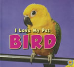 Bird - Aaron Carr